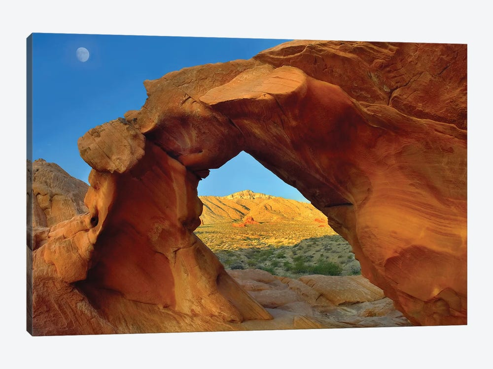 Arch Rock And Moon, Valley Of Fire State Park, Nevada by Tim Fitzharris 1-piece Canvas Art Print