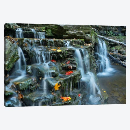 Kitchen Creek Cascades, Autumn, Ricketts Glen State Park, Pennsylvania Canvas Print #TFI496} by Tim Fitzharris Canvas Art