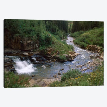 La Plata River, La Plata Canyon, San Juan National Forest, Colorado Canvas Print #TFI499} by Tim Fitzharris Canvas Art Print