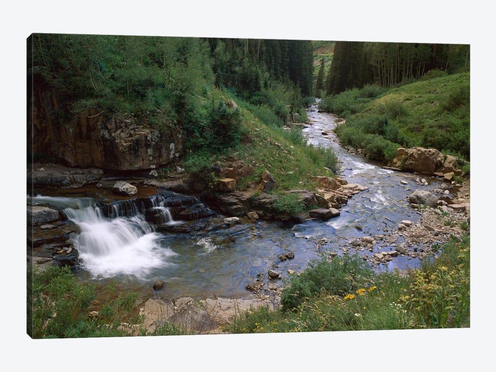 La Plata River, La Plata Canyon, San Juan National Forest, Colorado by Tim Fitzharris 1-piece Canvas Print