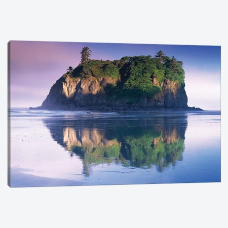 Abbey Island Looms Over Ruby Beach, Olympic National Park, Washington Canvas Print #TFI4} by Tim Fitzharris Canvas Print