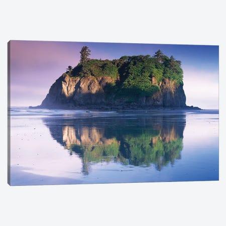 Abbey Island Looms Over Ruby Beach, Olympic National Park, Washington Canvas Print #TFI4} by Tim Fitzharris Canvas Print