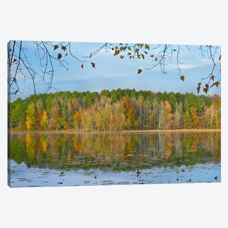 Lake Bailey, Petit Jean State Park, Arkansas Canvas Print #TFI501} by Tim Fitzharris Art Print