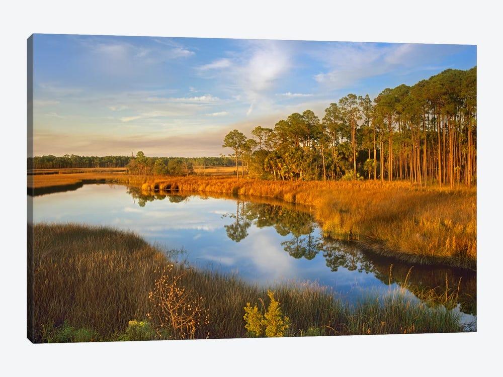 Lake Near Apalachicola, Florida by Tim Fitzharris 1-piece Canvas Wall Art