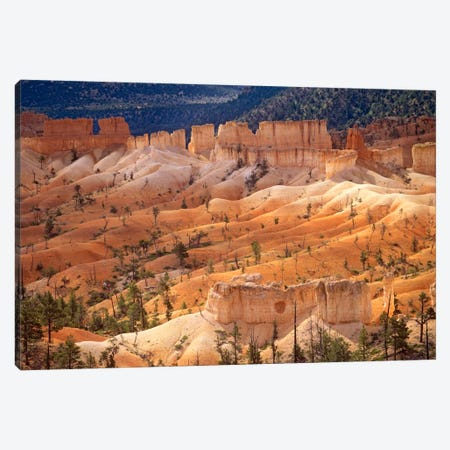 Landscape Of Eroded Formations Called Hoodoos And Fins, Bryce Canyon National Park, Utah Canvas Print #TFI506} by Tim Fitzharris Canvas Wall Art