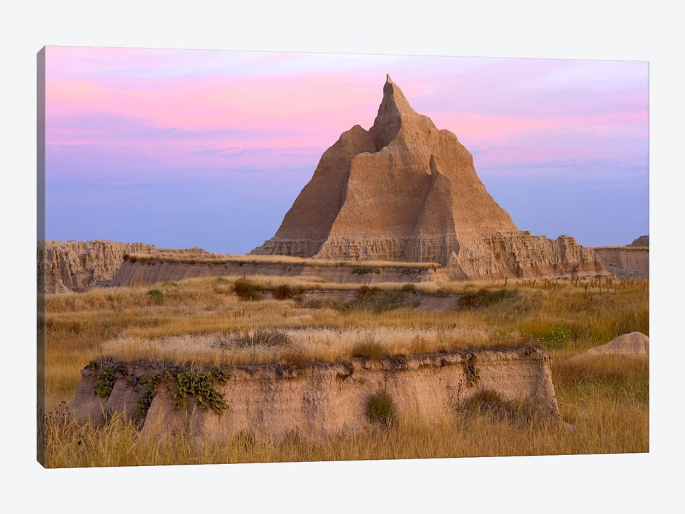 Landscape Showing Erosional Features With Grassland, Badlands National Park, South Dakota by Tim Fitzharris 1-piece Canvas Art