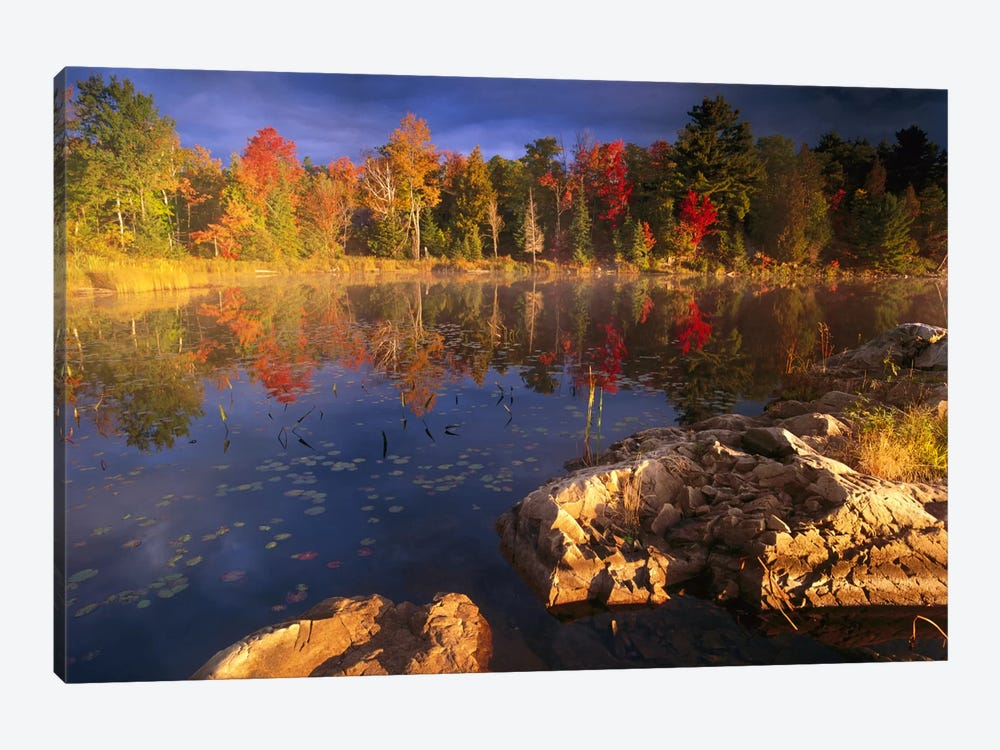 Lang Lake, Fall Colors, Ontario, Canada by Tim Fitzharris 1-piece Canvas Print