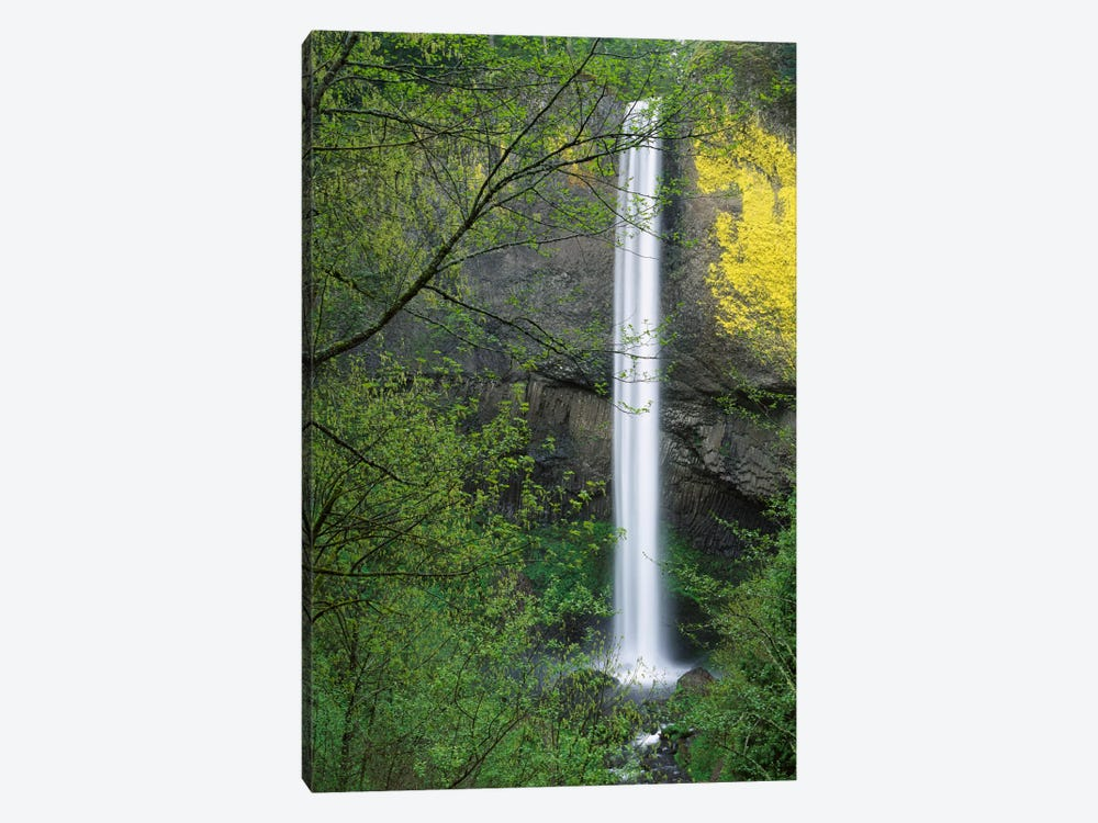 Latourell Falls, Columbia River Gorge Near Portland, Oregon I by Tim Fitzharris 1-piece Canvas Art