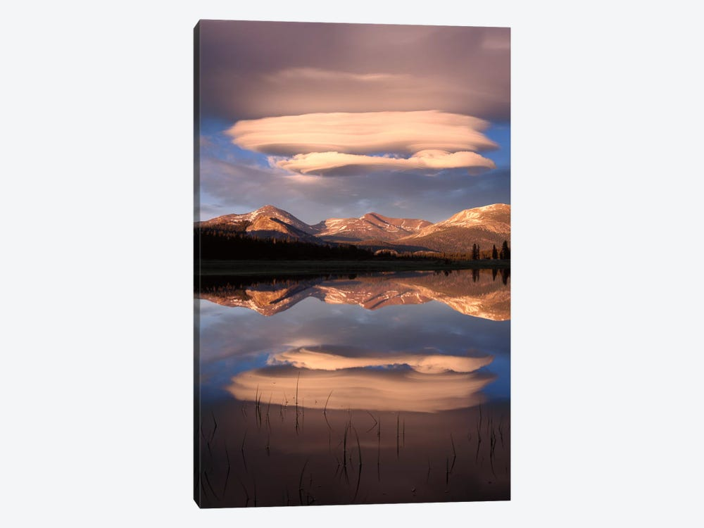 Lenticular Clouds Reflected In Flooded Tuolumne Meadows, Yosemite National Park, California by Tim Fitzharris 1-piece Art Print