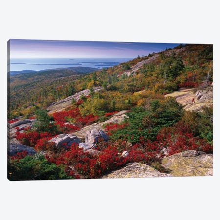 Atlantic Coast From Cadillac Mountain, Acadia National Park, Maine Canvas Print #TFI52} by Tim Fitzharris Art Print