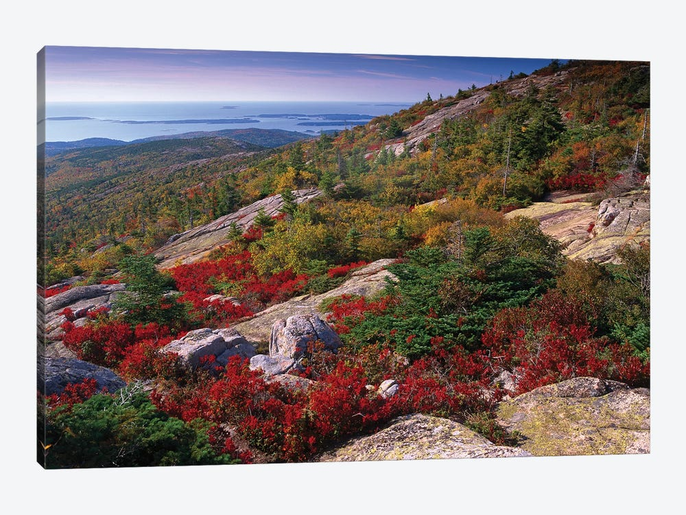 Atlantic Coast From Cadillac Mountain, Acadia National Park, Maine by Tim Fitzharris 1-piece Canvas Print