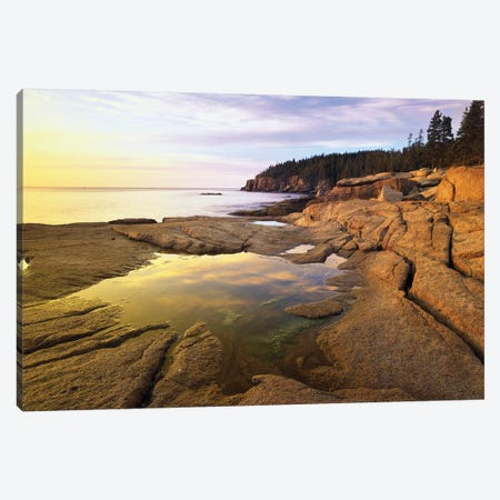 Atlantic Coast Near Thunder Hole, Acadia National Park, Maine I Canvas Print #TFI53} by Tim Fitzharris Canvas Art Print