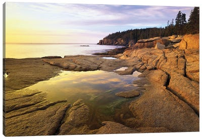 Atlantic Coast Near Thunder Hole, Acadia National Park, Maine I Canvas Art Print