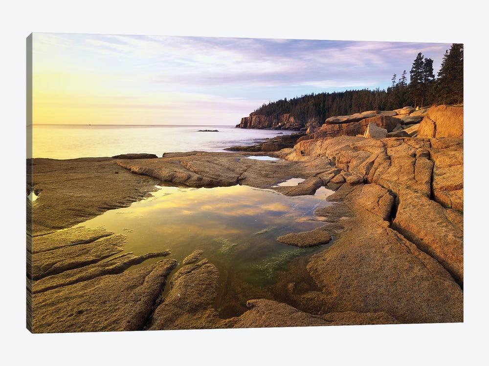 Atlantic Coast Near Thunder Hole, Acadia National Park, Maine I by Tim Fitzharris 1-piece Canvas Wall Art