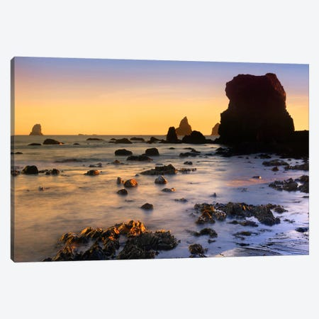 Lone Beach At Sunset, Oregon Canvas Print #TFI540} by Tim Fitzharris Art Print