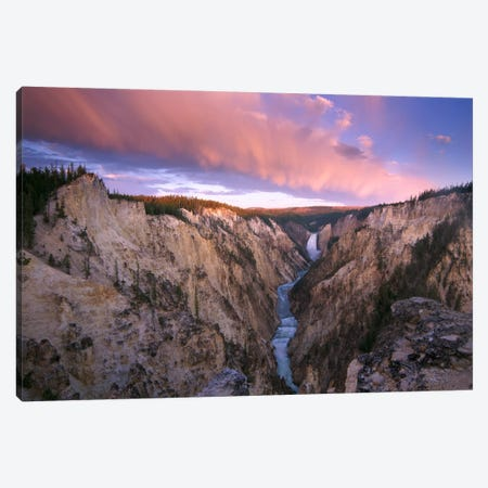 Lower Yellowstone Falls, Yellowstone National Park, Wyoming I Canvas Print #TFI549} by Tim Fitzharris Canvas Print