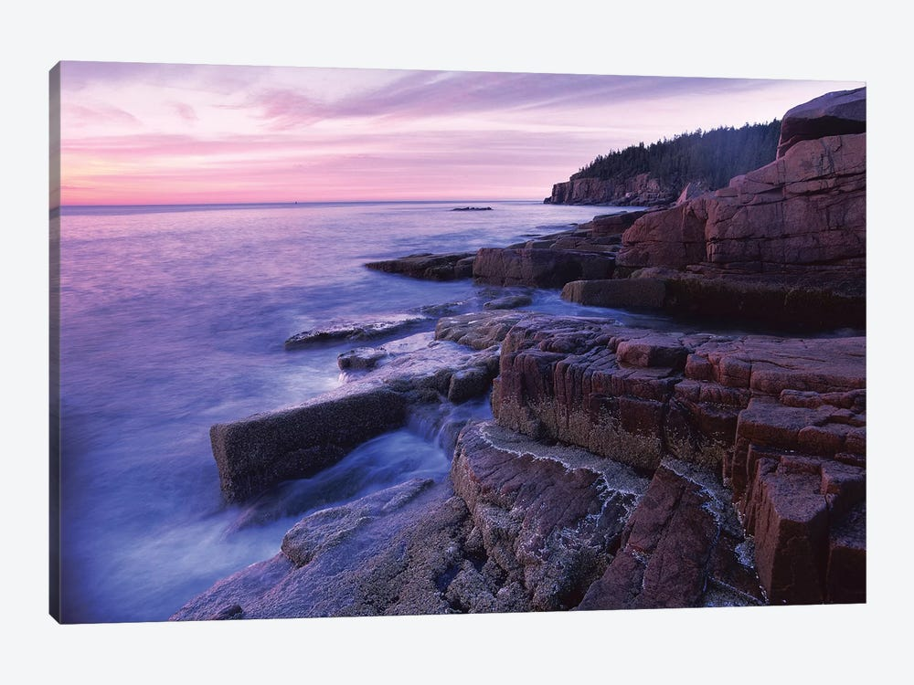 Atlantic Coast Near Thunder Hole, Acadia National Park, Maine II by Tim Fitzharris 1-piece Canvas Print