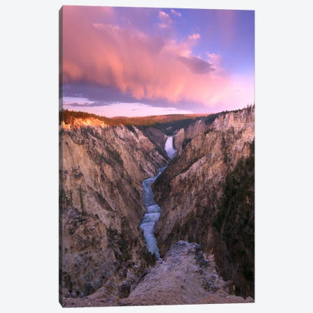 Lower Yellowstone Falls, Yellowstone National Park, Wyoming II Canvas Print #TFI550} by Tim Fitzharris Canvas Wall Art