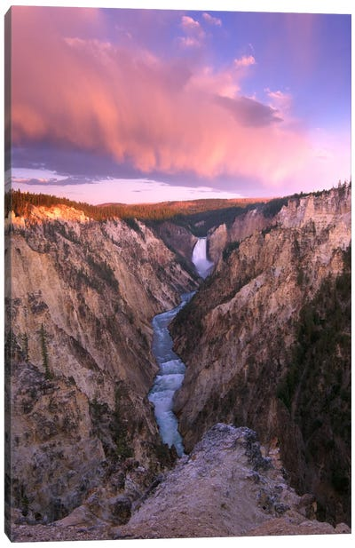 Lower Yellowstone Falls, Yellowstone National Park, Wyoming II Canvas Art Print