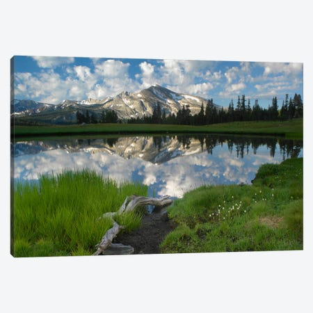 Mammoth Peak And Scattered Clouds Reflected In Seasonal Pool, Upper Dana Meadow, Yosemite National Park, California III Canvas Print #TFI565} by Tim Fitzharris Canvas Art