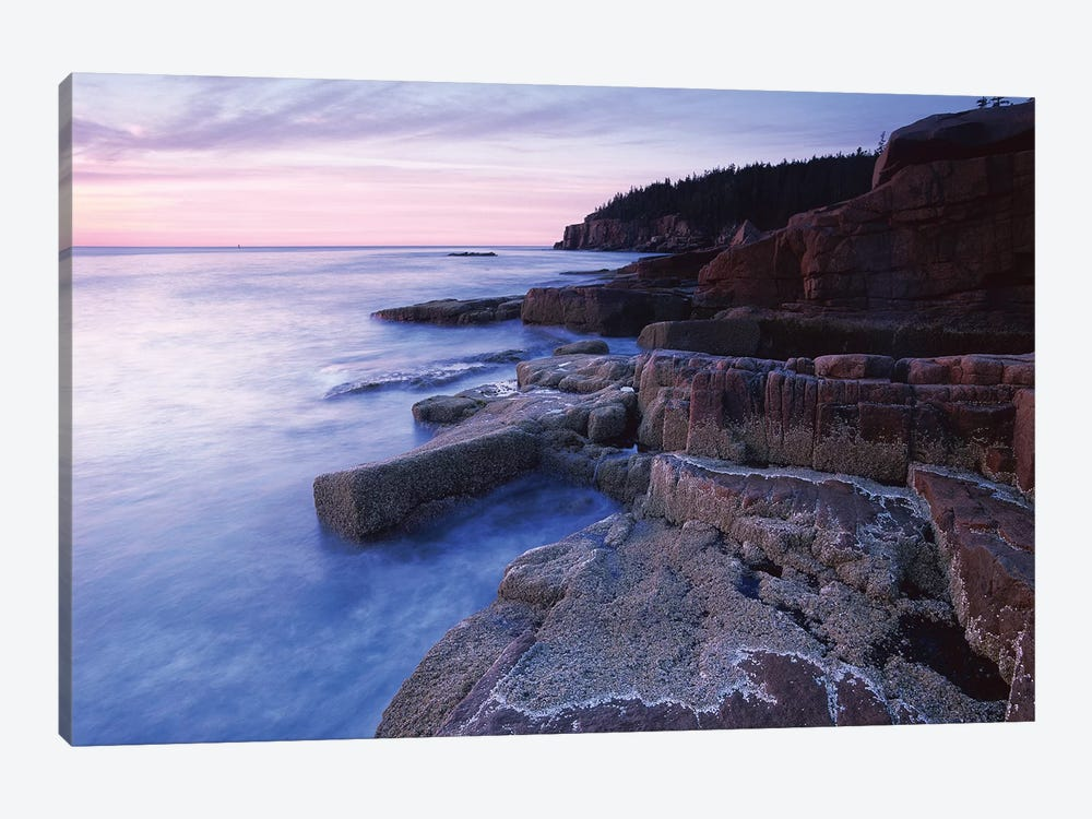 Atlantic Coast Near Thunder Hole, Acadia National Park, Maine IV by Tim Fitzharris 1-piece Canvas Art Print