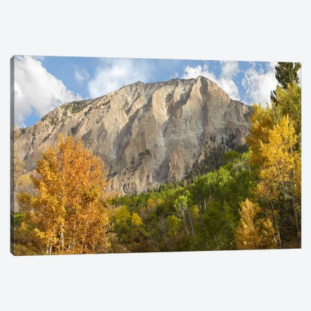 Marcellina Mountain Near Crested Butte, Colorado Canvas Print #TFI573} by Tim Fitzharris Canvas Artwork