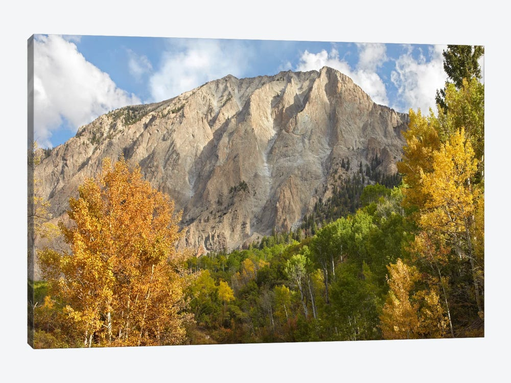 Marcellina Mountain Near Crested Butte, Colorado by Tim Fitzharris 1-piece Canvas Art