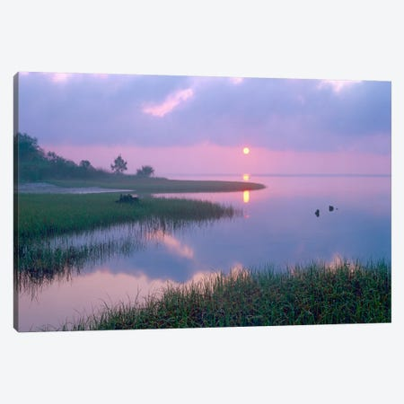 Marsh At Sunrise Over Eagle Bay, St Joseph Peninsula, Florida Canvas Print #TFI577} by Tim Fitzharris Art Print