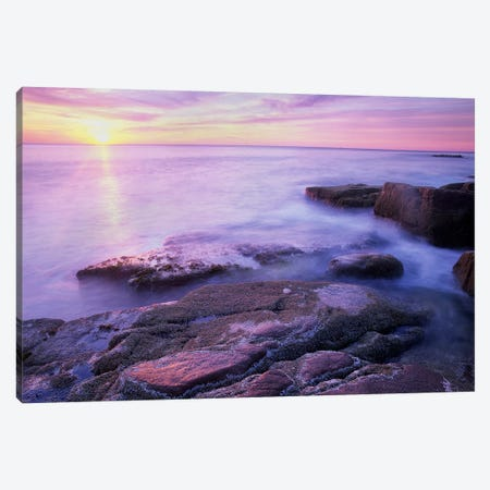 Atlantic Coast Near Thunder Hole, Acadia National Park, Maine V Canvas Print #TFI57} by Tim Fitzharris Canvas Art
