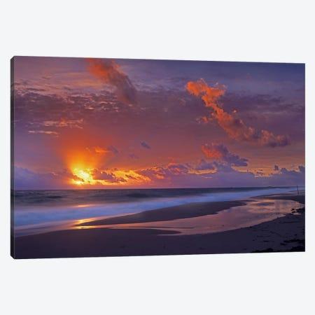 Mcarthur Beach At Sunrise, Florida 3-Piece Canvas #TFI585} by Tim Fitzharris Canvas Art