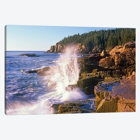 Atlantic Coast Near Thunder Hole, Acadia National Park, Maine VI Canvas Print #TFI58} by Tim Fitzharris Art Print