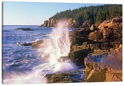 Atlantic Coast Near Thunder Hole, Acadia National Park, Maine VI Canvas Art Print