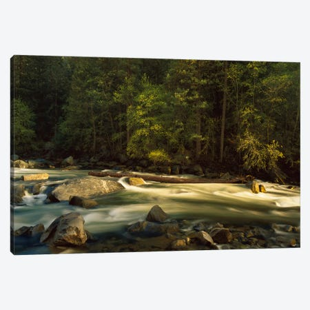 Merced River Flowing Through The Valley Floor, Yosemite National Park, California Canvas Print #TFI590} by Tim Fitzharris Canvas Art