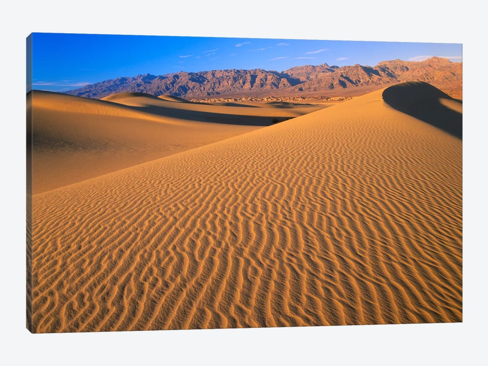 Mesquite Flat Sand Dunes, Death Valley National Park, California II by Tim Fitzharris 1-piece Art Print