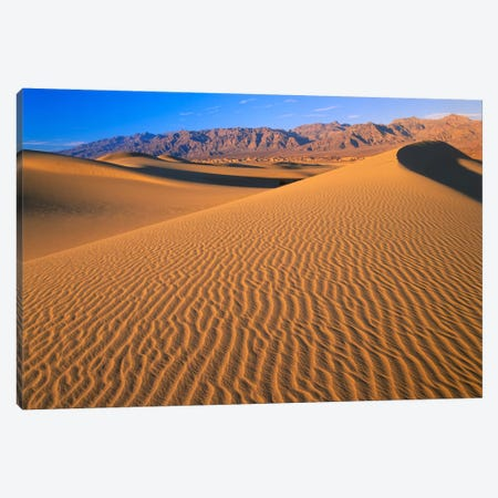 Mesquite Flat Sand Dunes, Death Valley National Park, California II Canvas Print #TFI594} by Tim Fitzharris Canvas Art Print