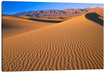 Mesquite Flat Sand Dunes, Death Valley National Park, California II Canvas Art Print