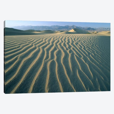 Mesquite Flat Sand Dunes, Death Valley National Park, California III Canvas Print #TFI595} by Tim Fitzharris Art Print