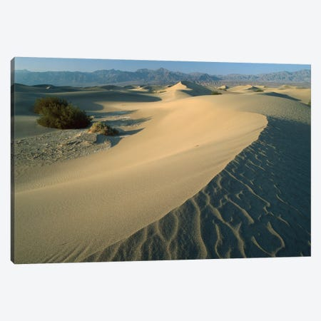 Mesquite Flat Sand Dunes, Death Valley National Park, California IV Canvas Print #TFI596} by Tim Fitzharris Art Print