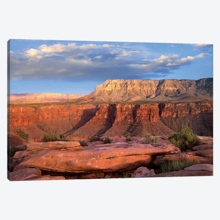 Aubrey Cliffs From Toroweap Overlook, Grand Canyon National Park, Arizona Canvas Print #TFI59} by Tim Fitzharris Canvas Print