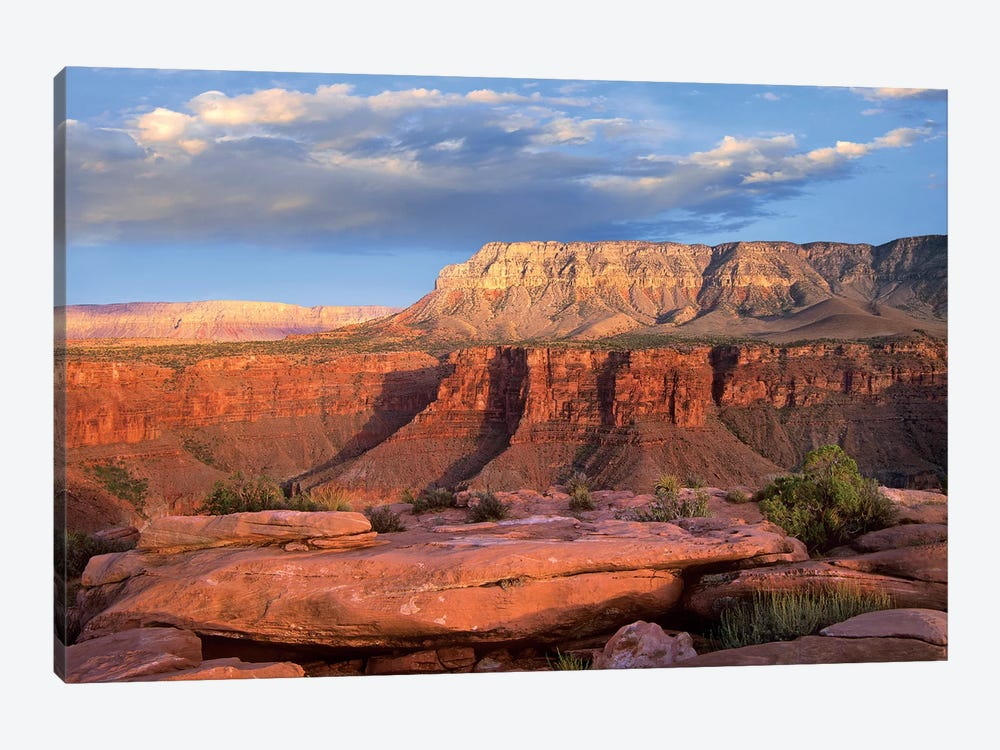 Aubrey Cliffs From Toroweap Overlook, Grand Canyon National Park, Arizona by Tim Fitzharris 1-piece Canvas Artwork