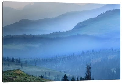 Mist Over Absaroka Range, Yellowstone National Park, Wyoming Canvas Art Print