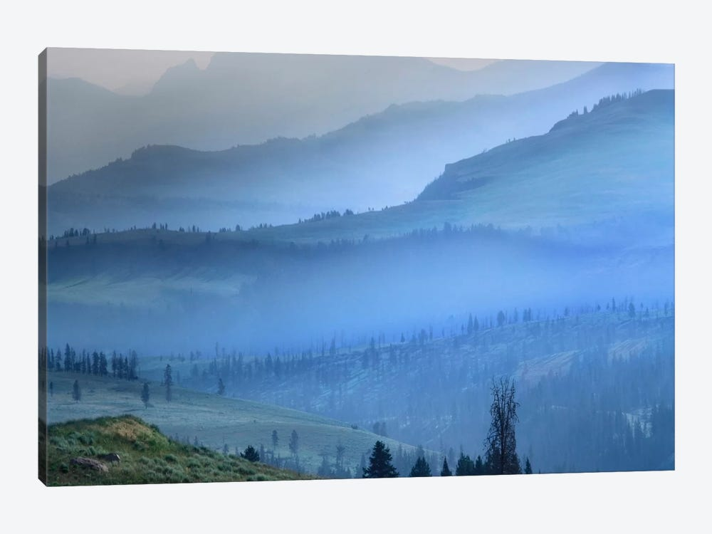 Mist Over Absaroka Range, Yellowstone National Park, Wyoming by Tim Fitzharris 1-piece Canvas Art