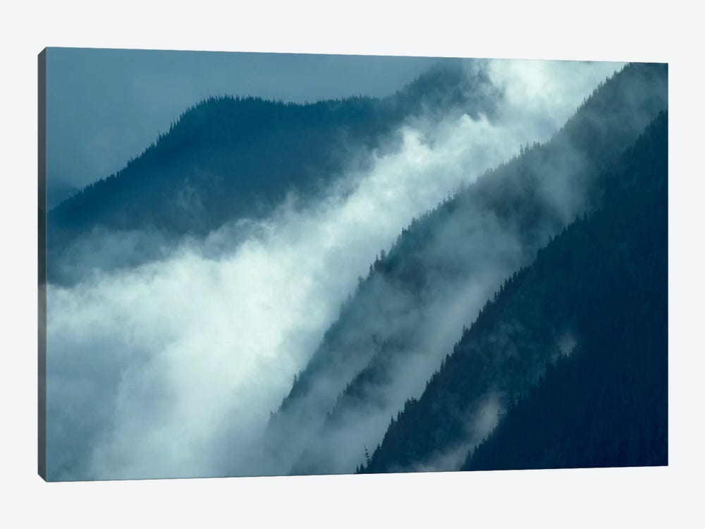 Mist Rising In The Cascade Mountains Near Hope, British Columbia, Canada by Tim Fitzharris 1-piece Canvas Wall Art