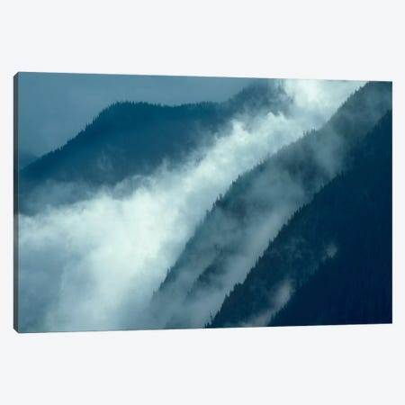 Mist Rising In The Cascade Mountains Near Hope, British Columbia, Canada Canvas Print #TFI602} by Tim Fitzharris Canvas Artwork