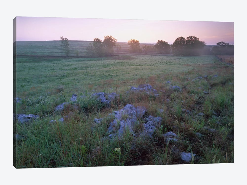 Misty Morning Over Prairie, Tallgrass Prairie National Preserve, Kansas 1-piece Canvas Print