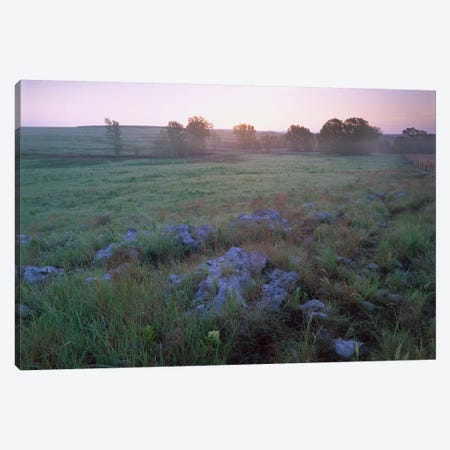 Misty Morning Over Prairie, Tallgrass Prairie National Preserve, Kansas Canvas Print #TFI603} by Tim Fitzharris Canvas Art