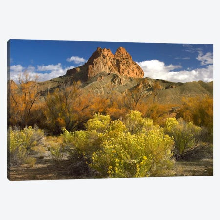 Mitten Rock, New Mexico 3-Piece Canvas #TFI604} by Tim Fitzharris Art Print