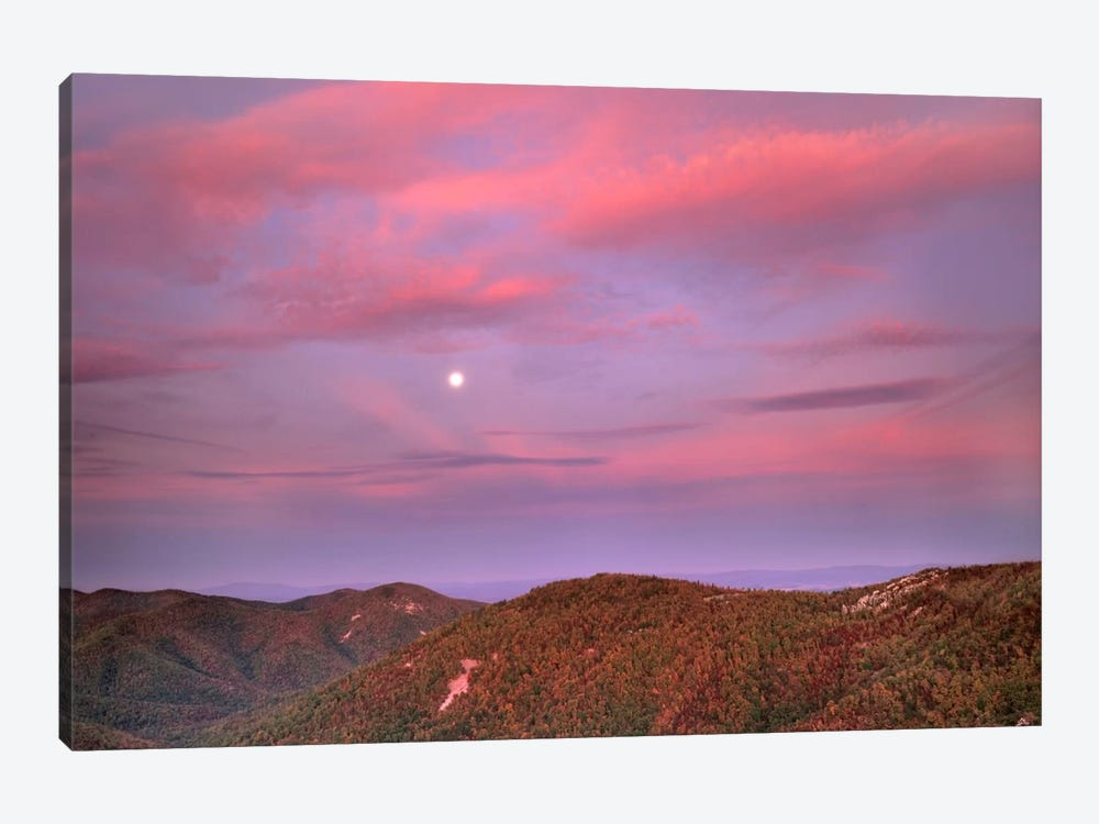 Moon Over Blue Ridge Range And Lost Cove Cliffs, Blue Ridge Parkway, North Carolina by Tim Fitzharris 1-piece Canvas Art Print