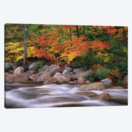 Autumn Along Swift River, White Mountains National Forest, New Hampshire - Horizontal Canvas Print #TFI60} by Tim Fitzharris Canvas Art