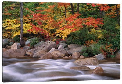 Autumn Along Swift River, White Mountains National Forest, New Hampshire - Horizontal Canvas Art Print